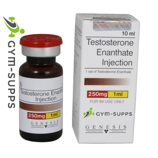 GENESIS MEDS TESTOSTERONE ENANTHATE 250mg x 10ml Gym Supps UK Fitness & Supplement Store